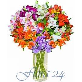 Доставкаа цветов донецк цветы альстромерия купить корневища